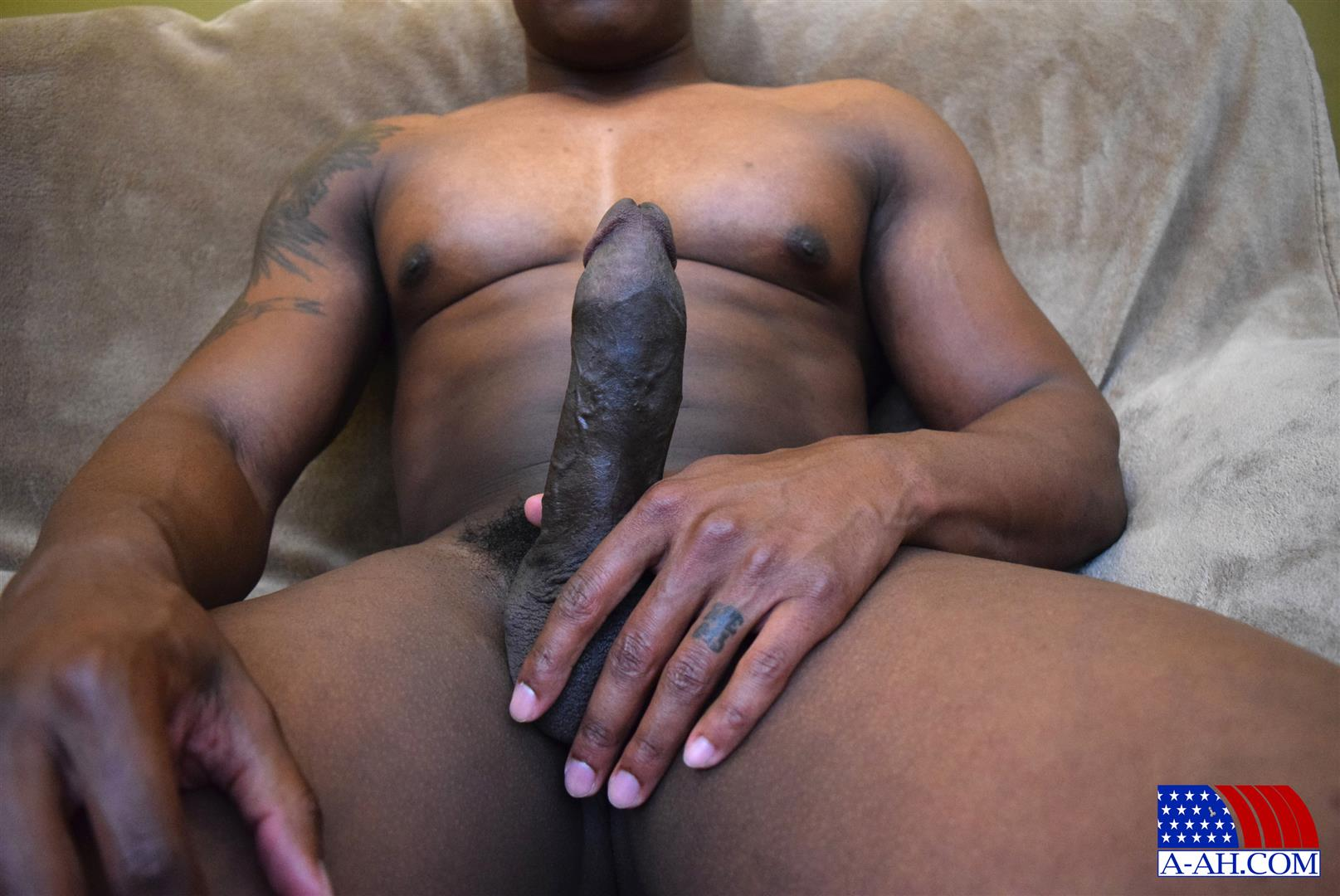 from Enzo gay blackcock