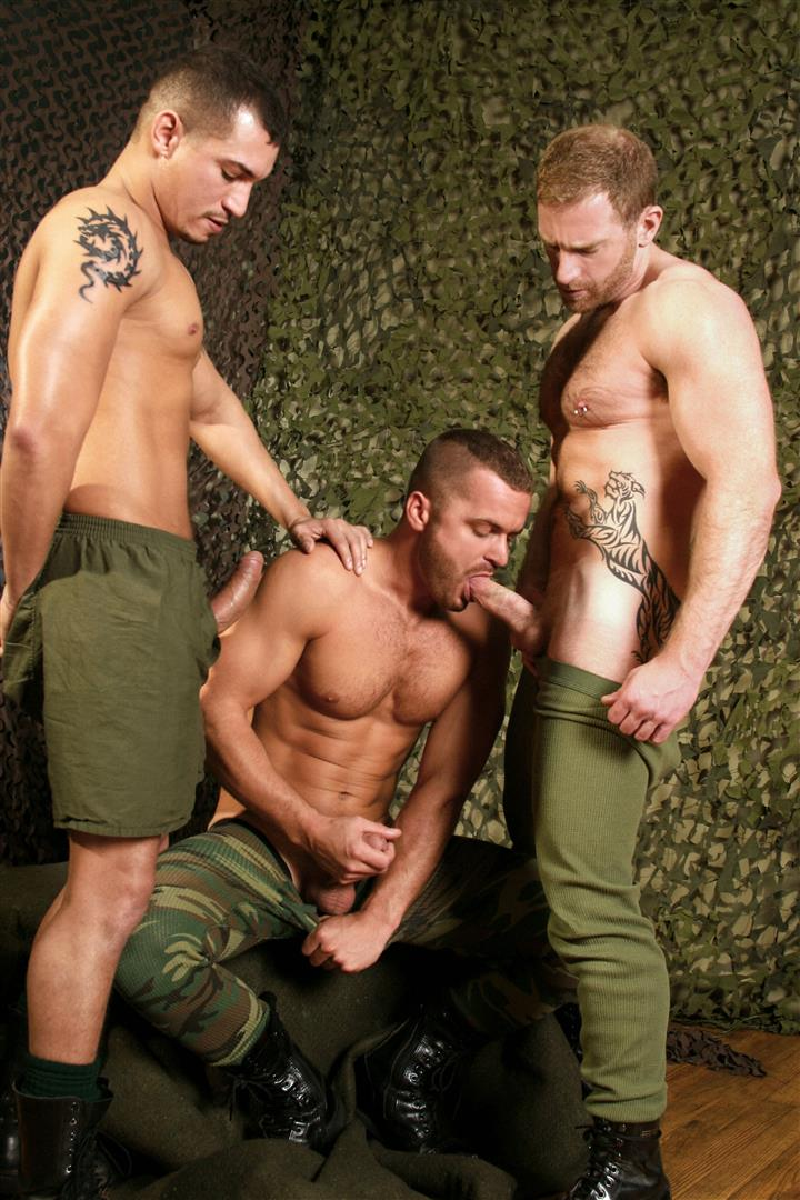 Gay. Surveys on gays in the military